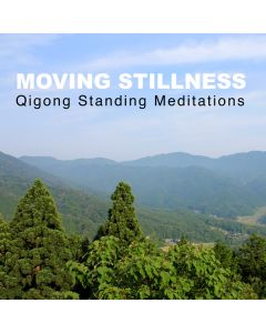 Moving Stillness - Qigong Standing Meditations cover
